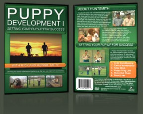 PUPPY DEVELOPMENT I DVD